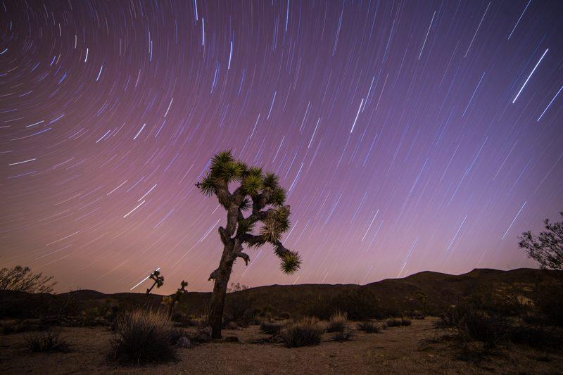 Joshua Tree Star Photography